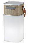Bluetooth Lautsprecher mit LED-Licht